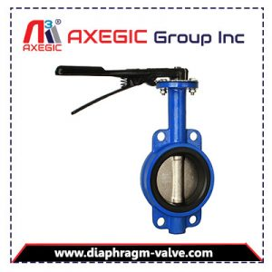 Butterfly Valve Manufacturer, Supplier and Exporter in Ahmedabad, Gujarat, India