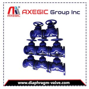 Diaphragm Valav Supplier and Exporter in Ahmedabad