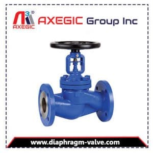 Manufacturer and Supplier of Globe Valve in Gujarat, India