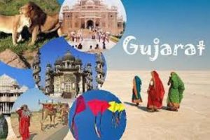 Diaphragm Valve Manufacturer, Supplier and Exporter in Gujarat